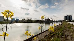 Hildesheimer Hafen