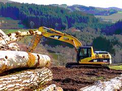 Déforestation...