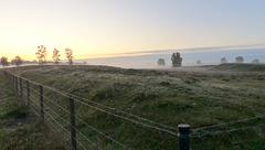 Morning Mist...