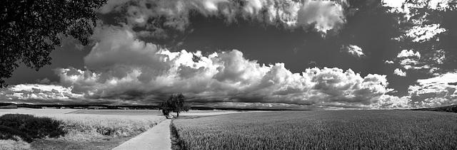 Sommerwolken - Summer Clouds (345°)