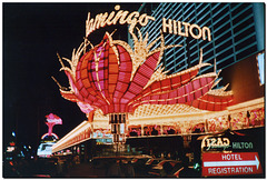 Las Vegas | Flamingo Hilton