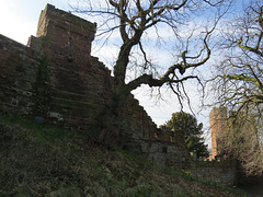 bonewaldsthorne's tower, chester