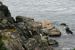 West Quoddy Head (Maine)