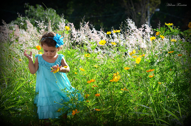 ~ Our angel in the garden ~