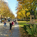 Adelaide North Terrace early on a winter afternoon