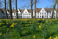 België - Brugge, Begijnhof