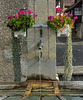 Brunnen in der Choligass