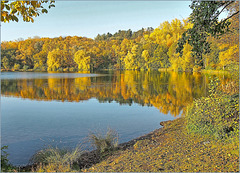 Waldsee Grube Fernie