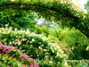 FR - Giverny - Claude Monet's House and Garden