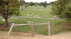 Necropolis Avenstonien