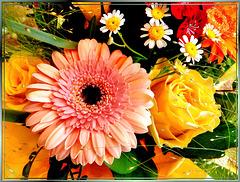 Summer blossoms... ©UdoSm
