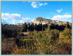 Vue sur les Alpilles en automne, View on Alpilles in autumn .