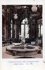 The Conservatory, Trentham Hall, Staffordshire from a nineteenth century carte de visite