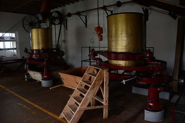 Azores, Island of San Miguel, Cha Gorreana Tea Factory