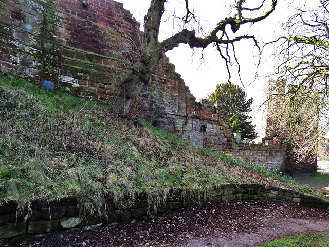 town walls chester (9)