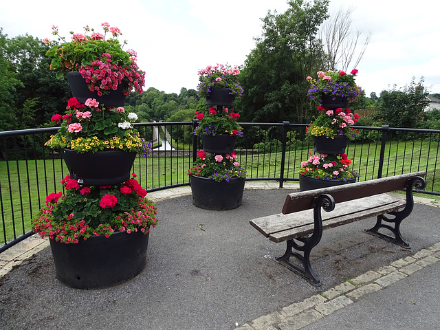 HFF from  Colourful Chirk