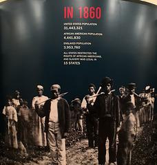Slavery in 1860 (0288)
