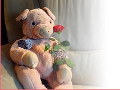The 50 Images-Project: Doudou vous offre une rose...