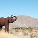 Borrego Springs, CA elephantine economy (# 0642 )