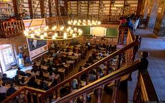 Library / Kütüphane