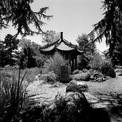 A Temple in the Glade