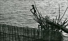 Pêcheries [Cambodge - Lac de Tonlé-Sap - 2006]