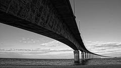 Ile de Ré : le pont