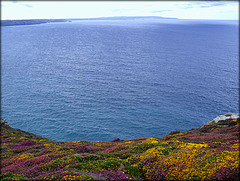 St Agnes Head