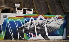 Whale, by Vasco Maio.