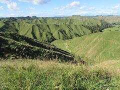 Green Hills.