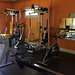02-La Salle de Musculation