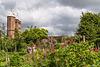 Sissinghurst: Rose Garden (2xPiP)