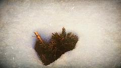 Dreams winter.6