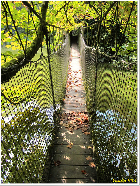Would you dare to cross it?