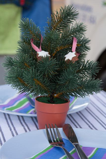 Homestory - unser Weihnachtsbaum