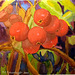 Crab Apples 10x9in