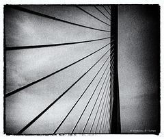 Skybridge Film Noir