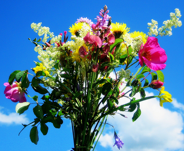 The bouquet of field flowers for H.A.N.W.E.