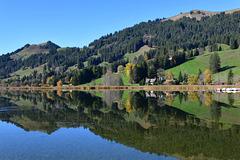 Miroir au bord du lac noir ...