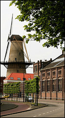 Dordrecht -2009