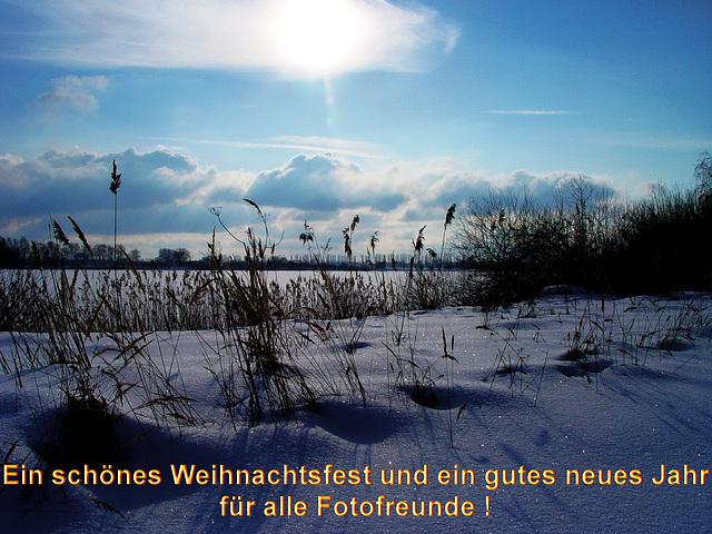 Lewitz im Winter