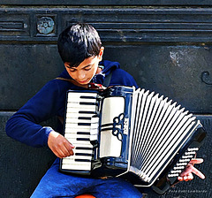 little accordion player