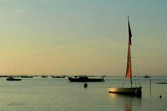 Les petits bateaux émeuvent toujours...