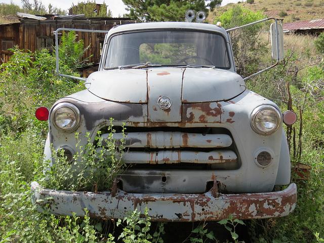 1954-1956 Dodge Job Rated Truck