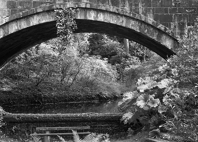 Under the Bridge at Lyme Park