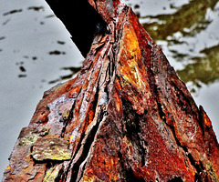 Mont Rust