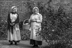 Shopping in the Kitchen Garden