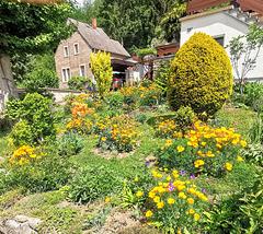 Garten in gelb