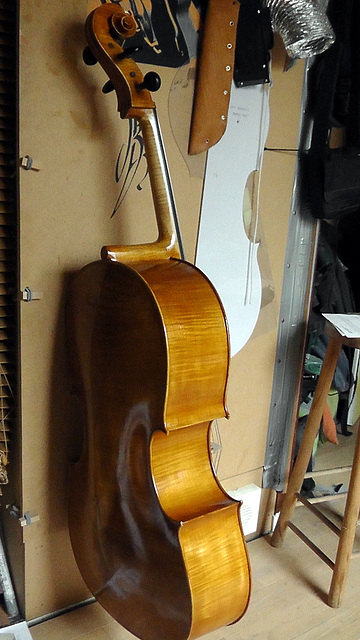 Cello violoncelle