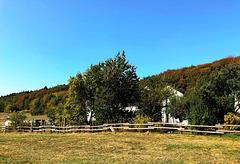 DE - Loogh - Landschaft beim Grönerhof